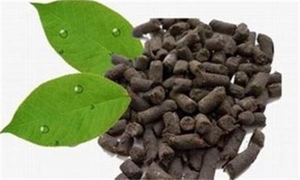 生物肥料的发展还需从哪三方面努力?