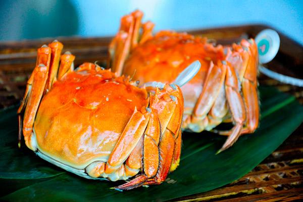 阳澄湖大闸蟹价格与食用季节间的关系