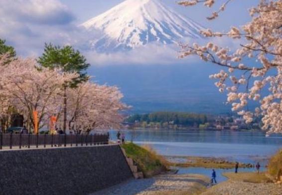 日本留学中介机构具有哪些优势