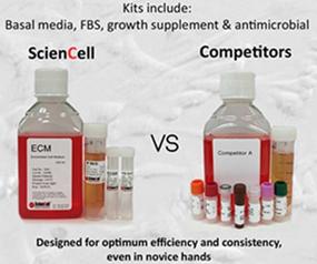 使用细胞培养基需要注意什么