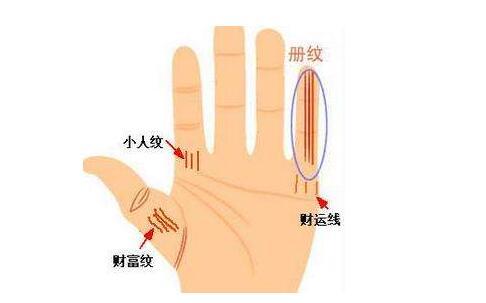 如何通过看手掌来进行财运预测?