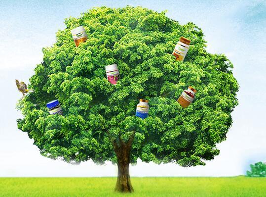 营养保健品的优势体现在哪些方面?