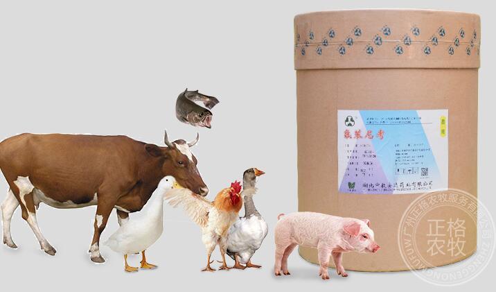 兽药原料批发能更好保障兽药品质的原因