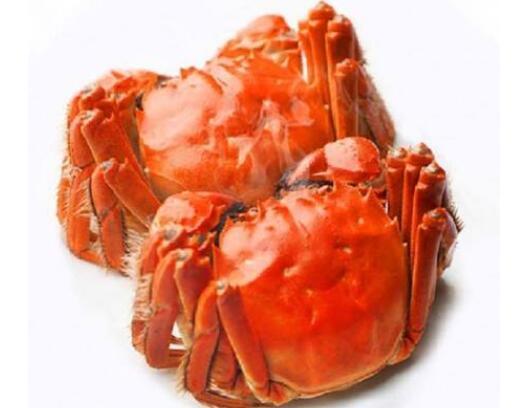 影响大闸蟹价格表定价的因素有哪些