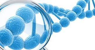 如何选择基因检测机构?