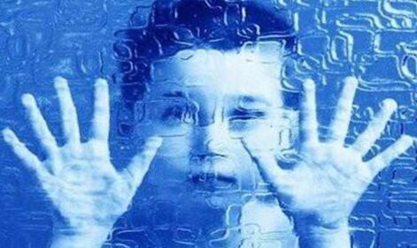轻度自闭症学校的教学内容是什么?