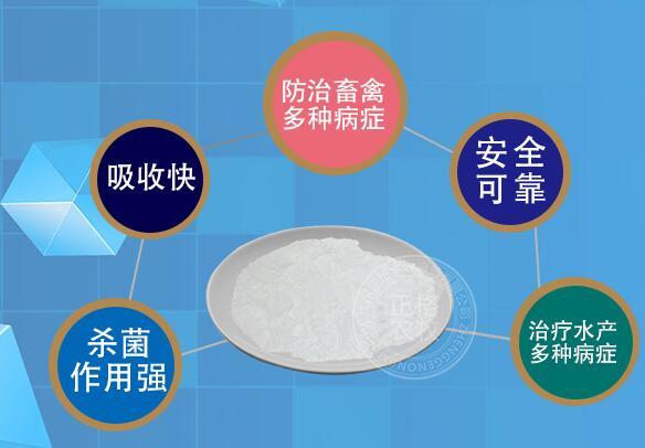 为什么要使用阿莫西林原粉