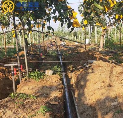 选择果树滴灌设备需要看哪些方面