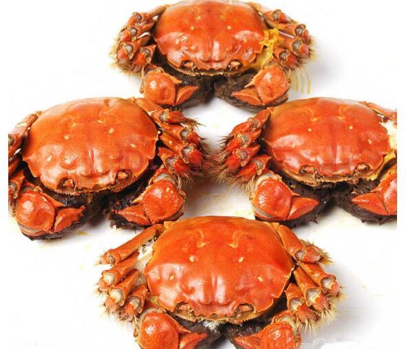 阳澄湖大闸蟹团购公司讲述:食用阳澄湖大闸蟹对身体有哪些好处
