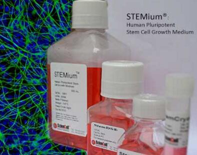 培養動物類細胞培養基需要滿足哪些條件