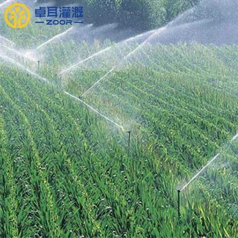 自動灌溉設備的系統類型有哪些?