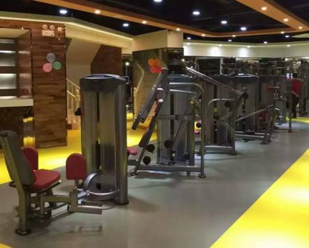 利用综合训练器可以做哪些运动呢