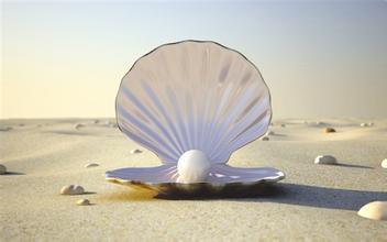 选择贝壳粉生产厂家的注意事项有哪些