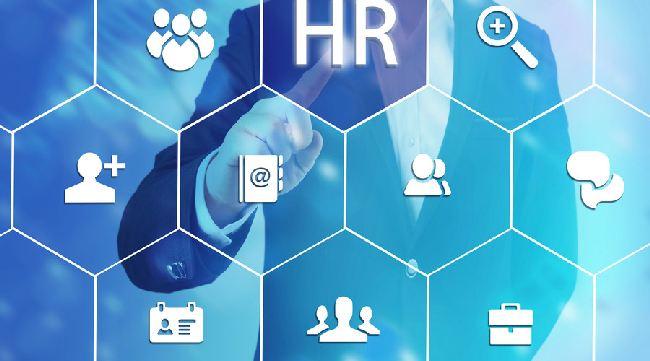 人力资源管理咨询有哪些优势条件